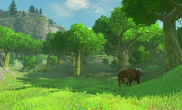 Xenoblade Developer Helping With Legend of Zelda: Breathe of the Wild