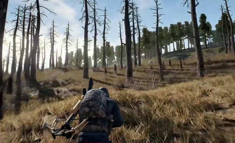PlayerUnknown Wants to Make a Survival Game